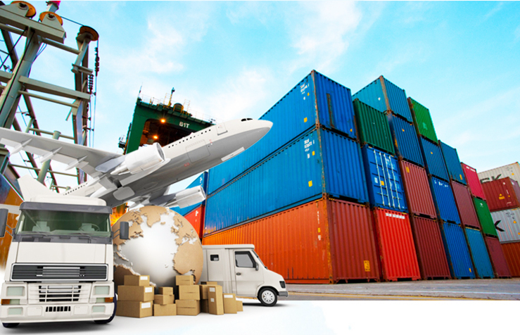 China Shipping & Delivery supplier