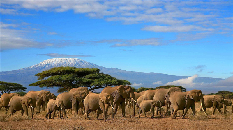 Top 10 Ecotourism African Countries