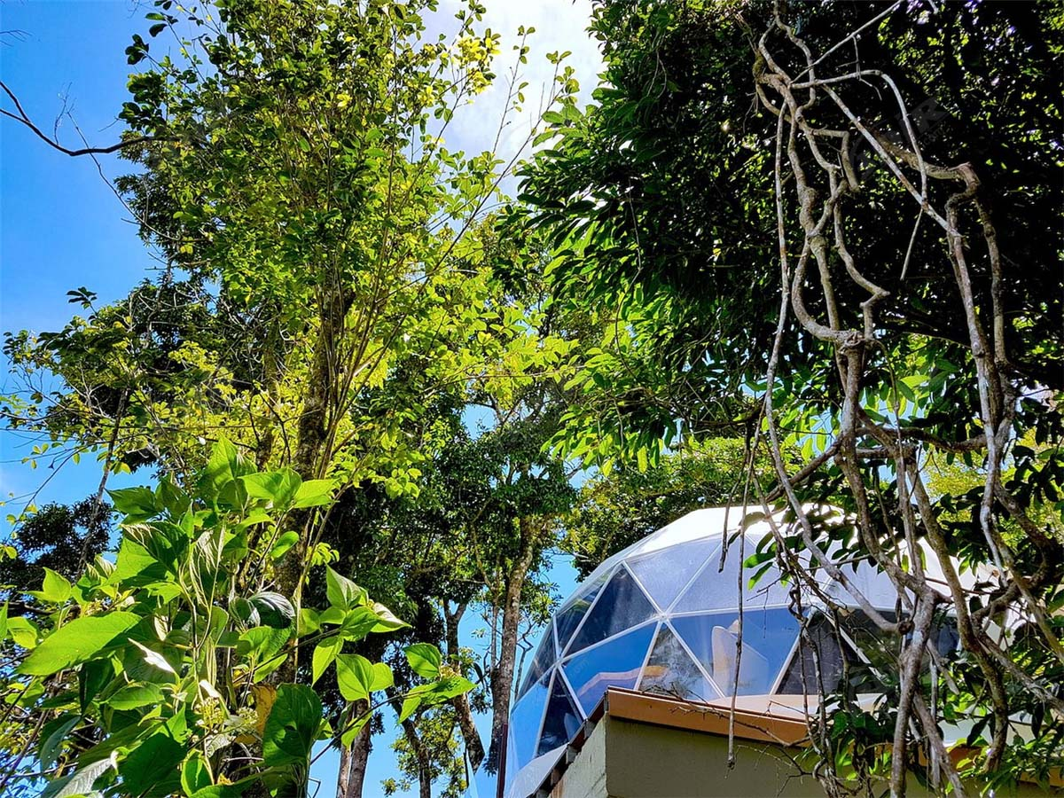 Monteverde Glamping Unique Experience with 6 Geodesic Domes Tent Pods