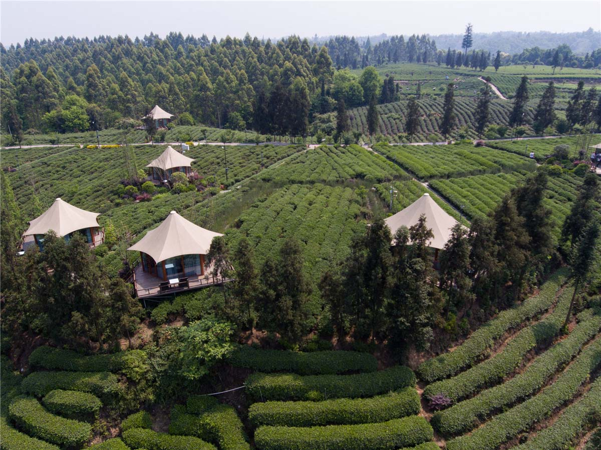 Luxury Eco Friendly Tent Structures Lodges For Tea Garden Holiday Hotel - Sichuan, China